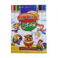 كتاب رنگ آميزي پرندگان اثر ابوالفضل سلطاني